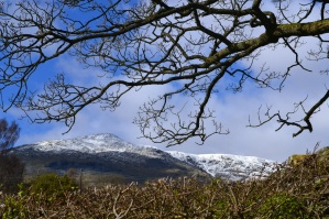 The Old Man of Coniston, a fell to the west of the village