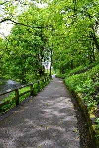 Path along the riverside