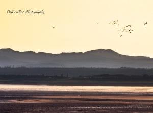 Ravenglass estuary