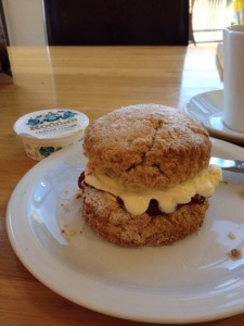 Few bites and it's scone.  Yum!