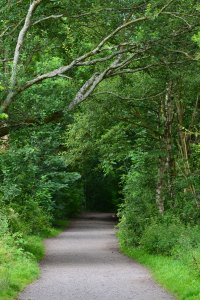 Along the Sett Valley Trail