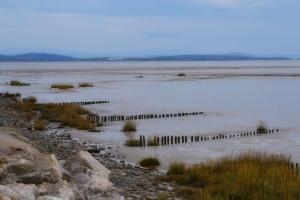A view along the coastline