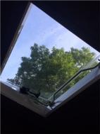 Morning sunshine 😎