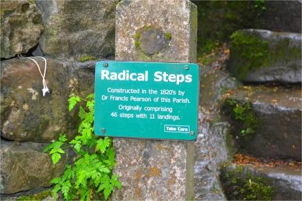 'Radical Steps'