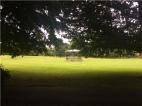 Cae Glas Park