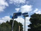 Hmm, which way to go