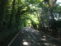 Scenic journey