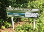 Red Squirrel Trail