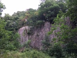 The rock face