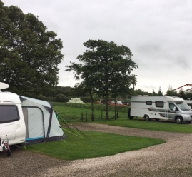 Jolly pitched up