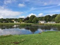 Village green and duck pond